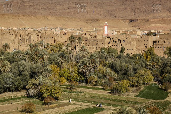 View over Tinerhir/Tinghir village and the cultivated fields of Todra valley, Atlas Mountain, Morocco.