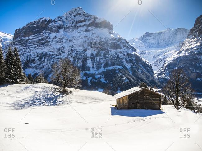 Switzerland- Canton of Bern- Grindelwald- winter landscape with ski hut and Mittelhorn