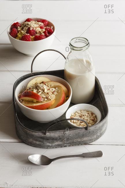 Bowl of porridge with raspberries and bowl of porridge with apples