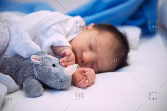 Newborn baby sleeping in bed with a stuffed rhino