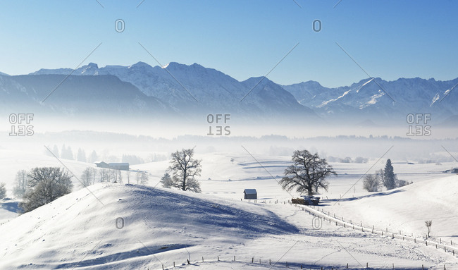 Germany- Pfaffenwinkel- winter landscape at morning mist