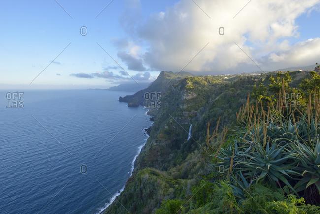Portugal- Madeira- cliffs at Santana- north coast