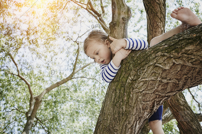 Girl climbing on a tree