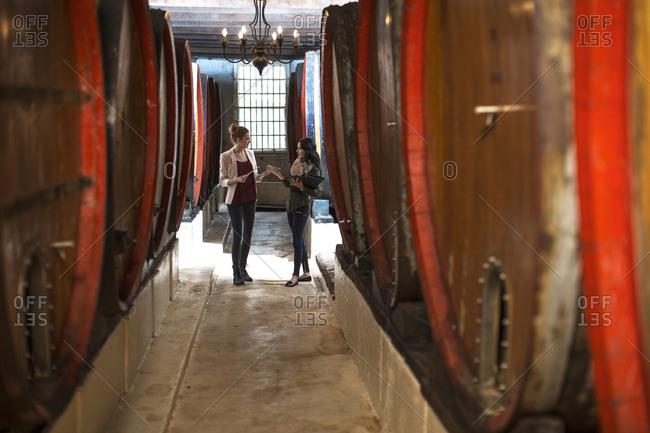 Businesswomen talking in wine cellar