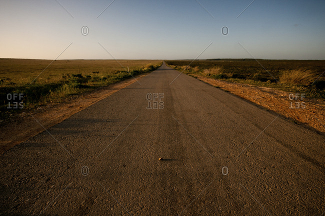 Lone road into remote field