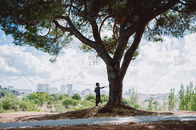 Young boy standing under a tree with skyline in background