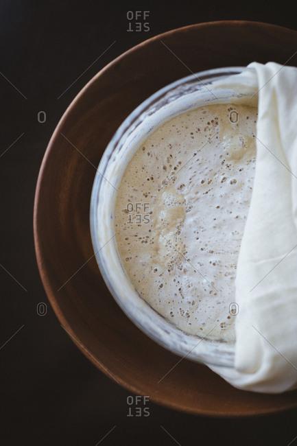 Sourdough bread starter mixture in a bowl