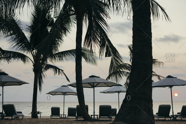 Beachside umbrellas and lounge chairs at a luxury resort