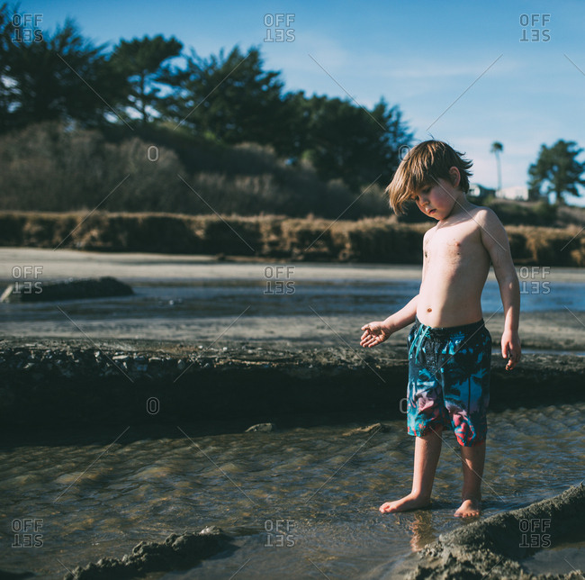 Little boy standing in water on a beach