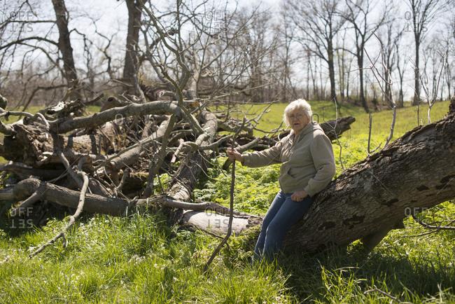 Senior woman leaning on a fallen tree