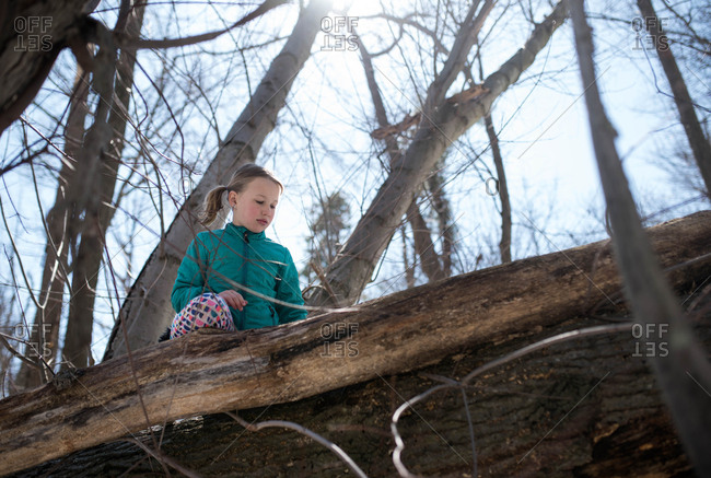 Low angle view of a girl climbing a tree