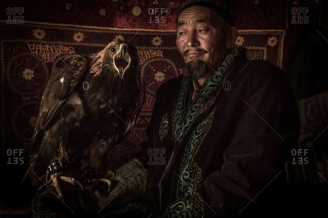 Altai Mountains, Mongolia - July 16, 2016: Senior Kazakh man holding his golden eagle used for hunting