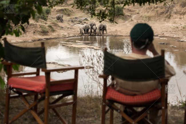 Man sits watching elephants drinking water