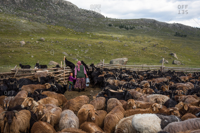 Altai Mountains, Mongolia - July 14, 2016: Boy and woman in goat corral