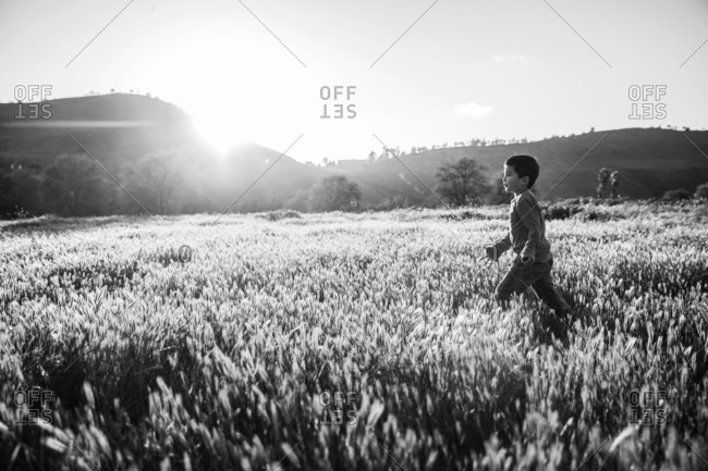Young boy walking through a field in black and white