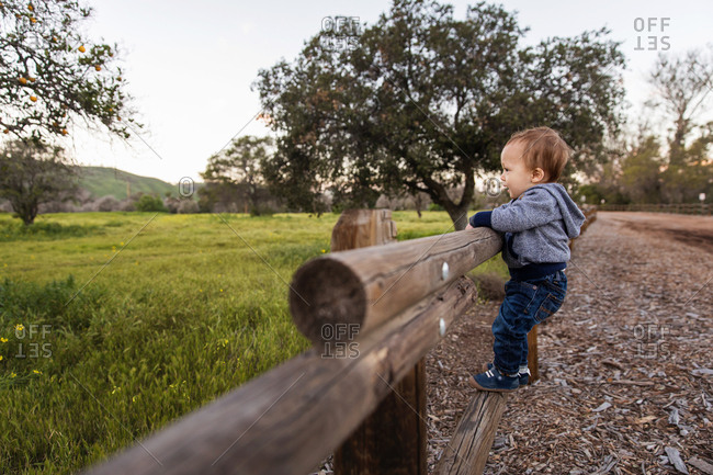 Toddler boy climbing on a wooden fence