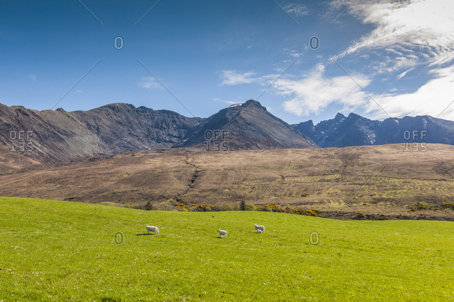 United Kingdom, Scotland, Skye Island . Bualintur, beautiful landscape around Cuillin Hills