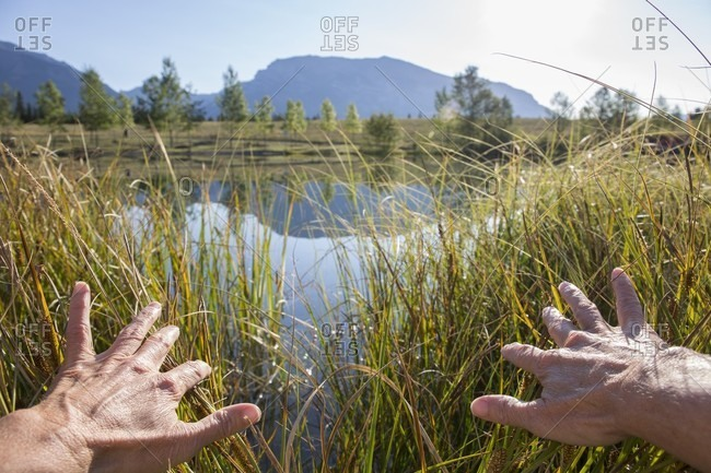 Hands pulls back grasses to reveal mountain lake