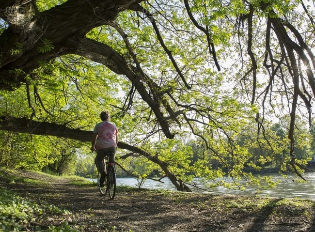 Man bikes along river edge, forest