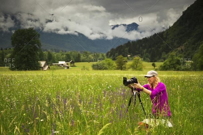 Tourist photographs a wildflower field in springtime near Bohinjska Bistrica, in the Julian Alps, Slovenia