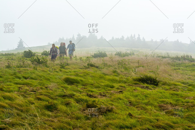 Two Men And One Woman Hiking Along Grassy Ridge Extension Trail To The Appalachian Trail In The Fog