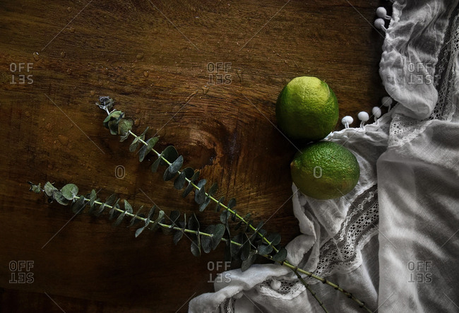 Still life with limes and eucalyptus