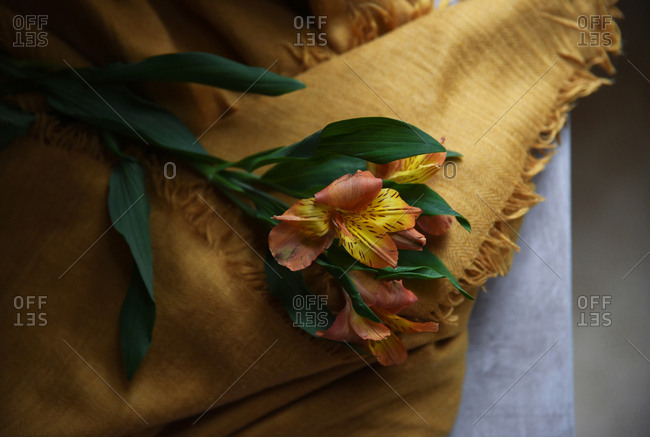 Still life with lilies on a yellow scarf