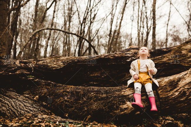 Girl sitting on log in the woods