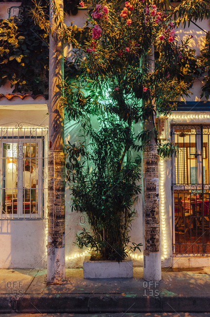 Cartagena de Indias, Colombia - March 4, 2017: Tree artificially lit between door and window