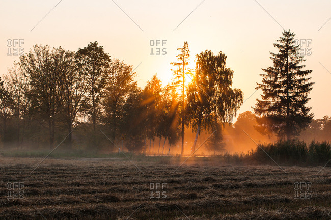 Harvest dust at sunset in countryside