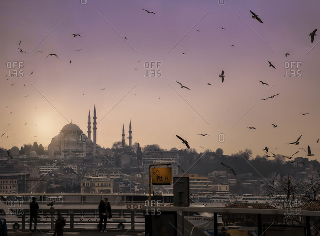March 11, 2017 - Istanbul, Turkey: Birds in sky over city at dawn