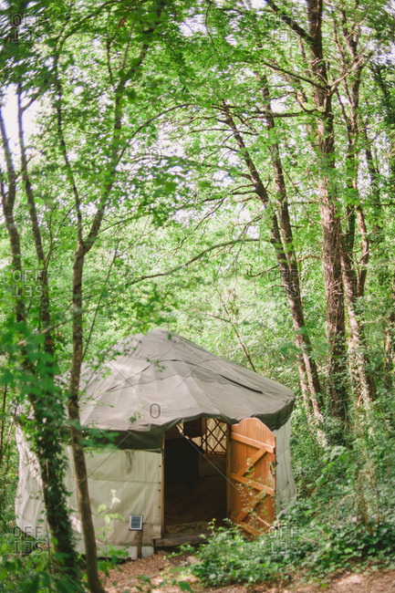 A yurt in the woods