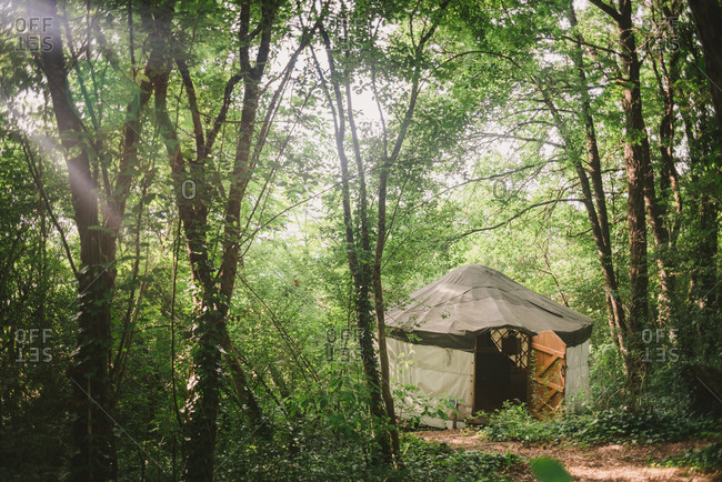 A yurt with wood door in forest