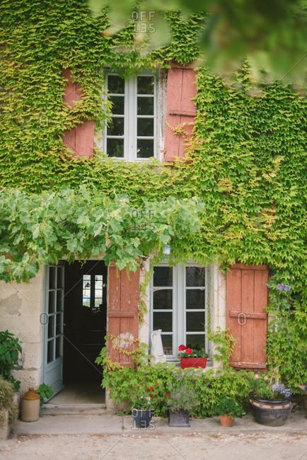 Vine covered house in Dordogne, France
