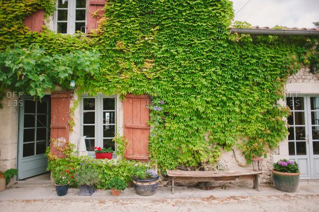 Vine covered home in Dordogne, France