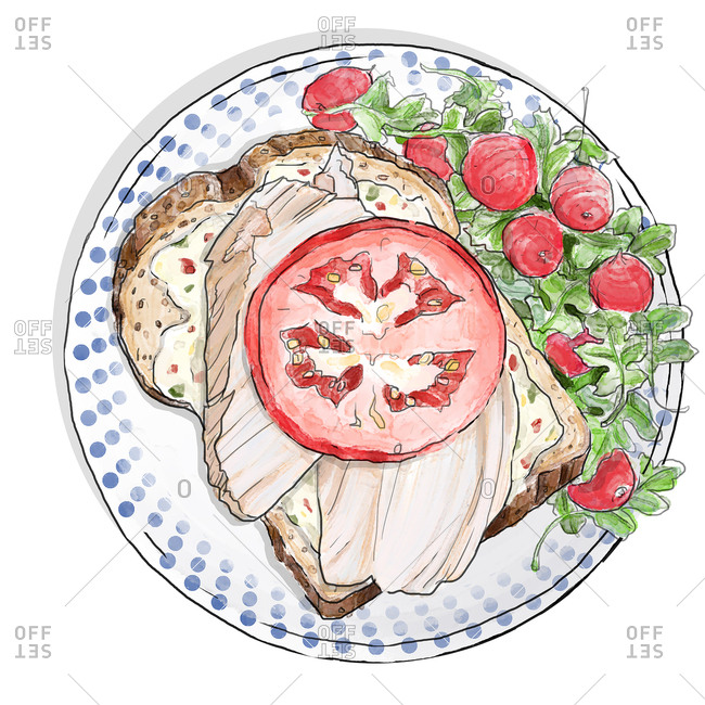 Overhead view of an open-faced turkey sandwich with salad