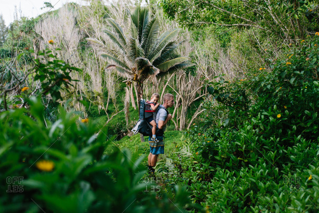 Man hiking with child in jungle