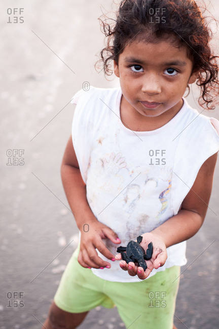 Nosara, Costa Rica - October 30, 2012: Young Costa Rican girl with baby turtle