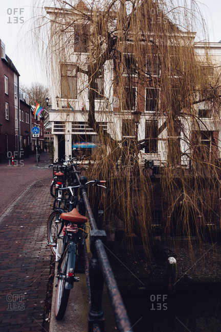 Utrecht, Netherlands - February 14, 2014: Bikes and weeping willow along canal