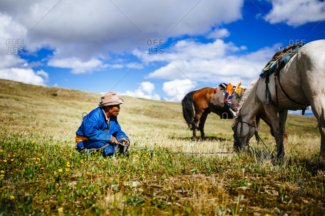 Northern Mongolia  - July 11, 2016: A Mongolian man sits in a green field as his horses graze on the grasses on the steppe