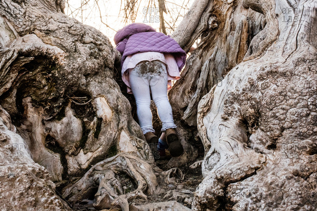 Rear view of a girl with dirty pants climbing in a tree