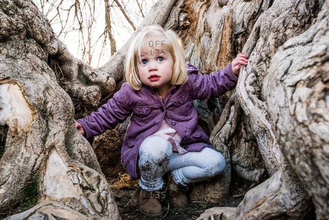 Little girl with dirty pants climbing in a tree