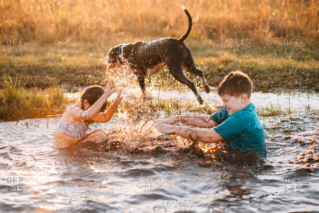 Children and dog splashing in mud puddle