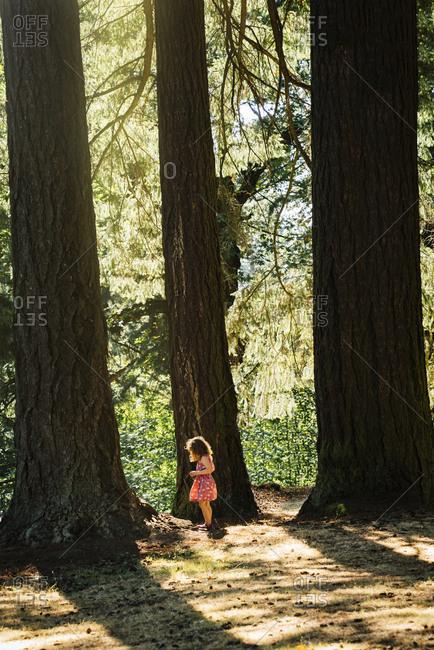 Caucasian girl exploring near trees