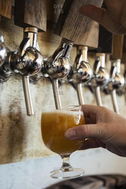 Hand of Caucasian man pouring beer from tap