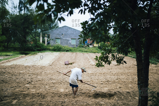 Hoi An, Vietnam - January 15, 2017: A man tends to his farmlands in the countryside outside of Hoi An, Vietnam.