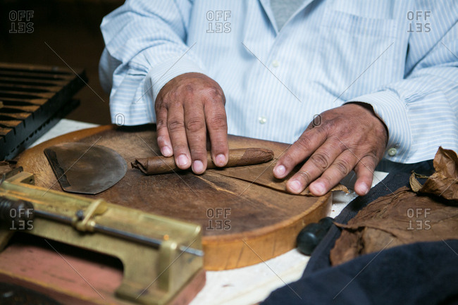 Hands of a man hand-rolling cigars