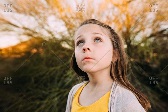 Young girl gazing upwards at dusk