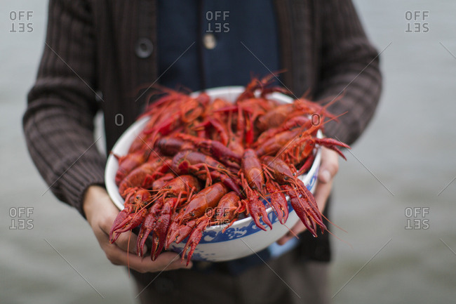 Sweden, Mid section of man holding bowl of crayfish (Astacidae)