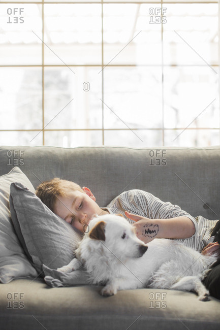 Sweden, Boy lying down on sofa with dog